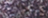 240091330-PAERLY VIOLET